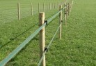 Acton TAS Electric fencing 4
