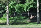 Acton TAS Wire fencing 14